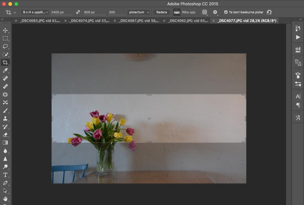 bloggheader foto exempel