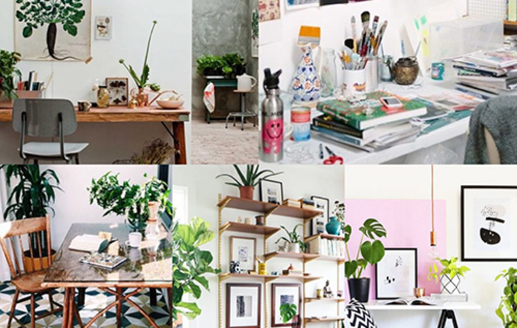 plants home office feat
