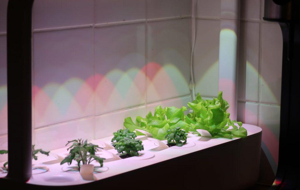 smart-garden-digital-tradgard-click-grow-feat-1