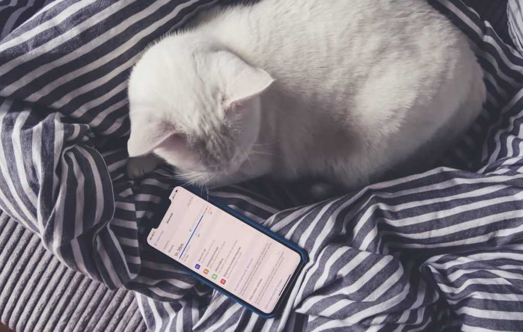 timers-pa-sociala-medier-skarmtid-iphone-ios12-2